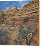 Layered Sandstone Wood Print