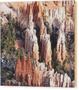 Layers Of Hoodoos And Bluffs Wood Print