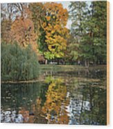 Lazienki Park Autumn Scenery In Warsaw Wood Print