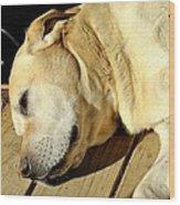 Lazy Farm Dog Wood Print