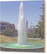 L B J Library Fountain Wood Print