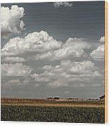 Lbj Ranch In Texas Wood Print