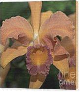 Lc. Roy Mcmillan  9865 Wood Print