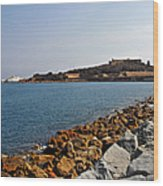Le Fort Carre - Antibes - France Wood Print