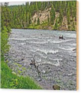 Le Hardy Rapids Of Yellowstone River In Yellowstone River In Yellowstone National Park-wyoming   Wood Print