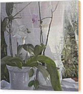 Le Orchidee Sfumate Wood Print