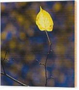 Leading Light Wood Print