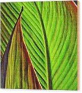 Leaf Abstract 4 Wood Print