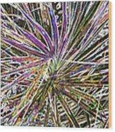Leaf Abstract II Wood Print
