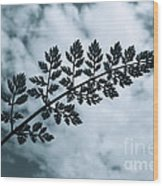 Leaf And Sky Wood Print