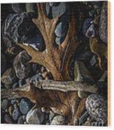 Leaf And Stones Wood Print