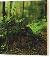 Leaf Bud Wood Print