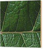 Leaf Close Up Wood Print