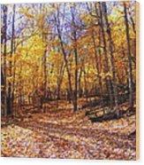 Leaf Covered Trail Wood Print