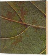 Leaf Design I Wood Print