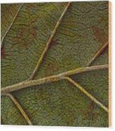 Leaf Design II Wood Print