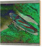 Leaf Hopper Wood Print