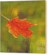 Leaf In Rain Wood Print