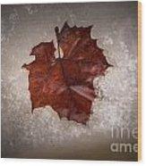 Leaf In Snow Wood Print