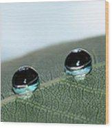 Leaf Jewels Wood Print