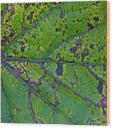 Leaf Macro Wood Print