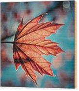 Leaf Of Light Wood Print