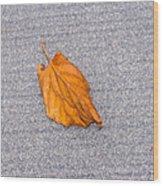 Leaf On Granite 1 Wood Print
