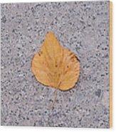 Leaf On Granite 2 - Square Wood Print