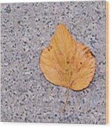 Leaf On Granite 2 Wood Print