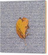 Leaf On Granite 3 - Square Wood Print