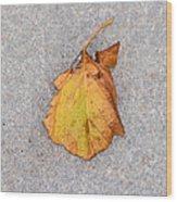 Leaf On Granite 4 - Square Wood Print