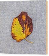 Leaf On Granite 5 - Square Wood Print