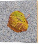 Leaf On Granite 6 - Square Wood Print