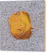 Leaf On Granite 7 - Square Wood Print