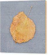 Leaf On Granite 9 - Square Wood Print
