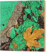 Leaf On Green Cement Wood Print