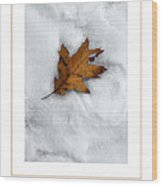 Leaf On Snow Poster Wood Print
