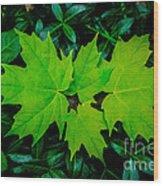 Leaf Overlay Wood Print