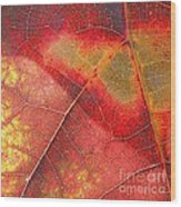 Leaf Pattern_1 Wood Print