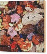 Leaf Patterns 2 Wood Print