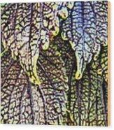 Leaf Series 15 Wood Print