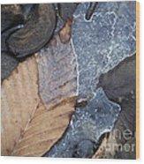 Leaf Series 42 Wood Print