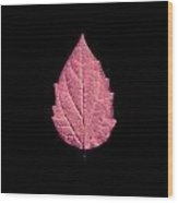 Leaf Series Fire Leaf Wood Print