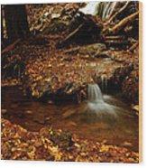 Leaf Splatter Wood Print