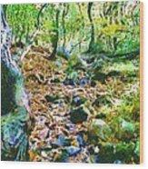 Leaf Stream Wood Print