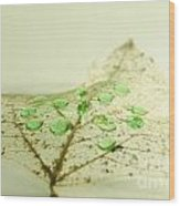 Leaf With Green Drops Wood Print