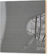 Leafless Wood Print