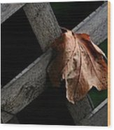 Leaflet Wood Print