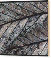 Leaflets Wood Print