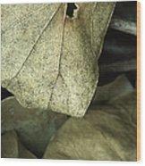 Leafpile 2 Wood Print